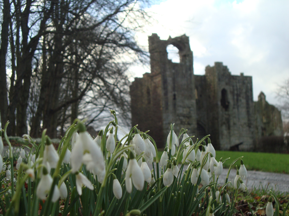 Etal Castle early spring